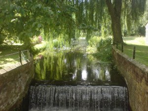 river-chelmer-in-langleys-estate-great-waltham-634177