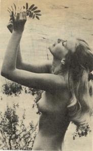 hippie 15