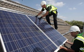 Government to cut solar subsidies