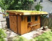wood-shed-with-green-grass-roof-sliding-doors-overhanging-roof